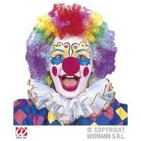 Parrucca Clown Multicolor Bambino