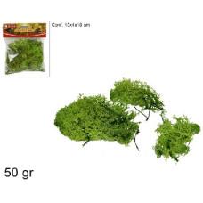 Bst. Lichena 50 gr