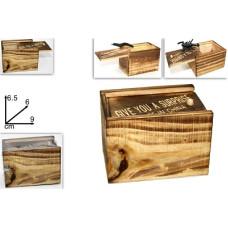 Cassetta legno con insetto