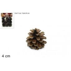 Bst. 9 Pigne Naturali 4 cm