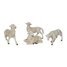 Bst. 4 Pecore 12x12 cm